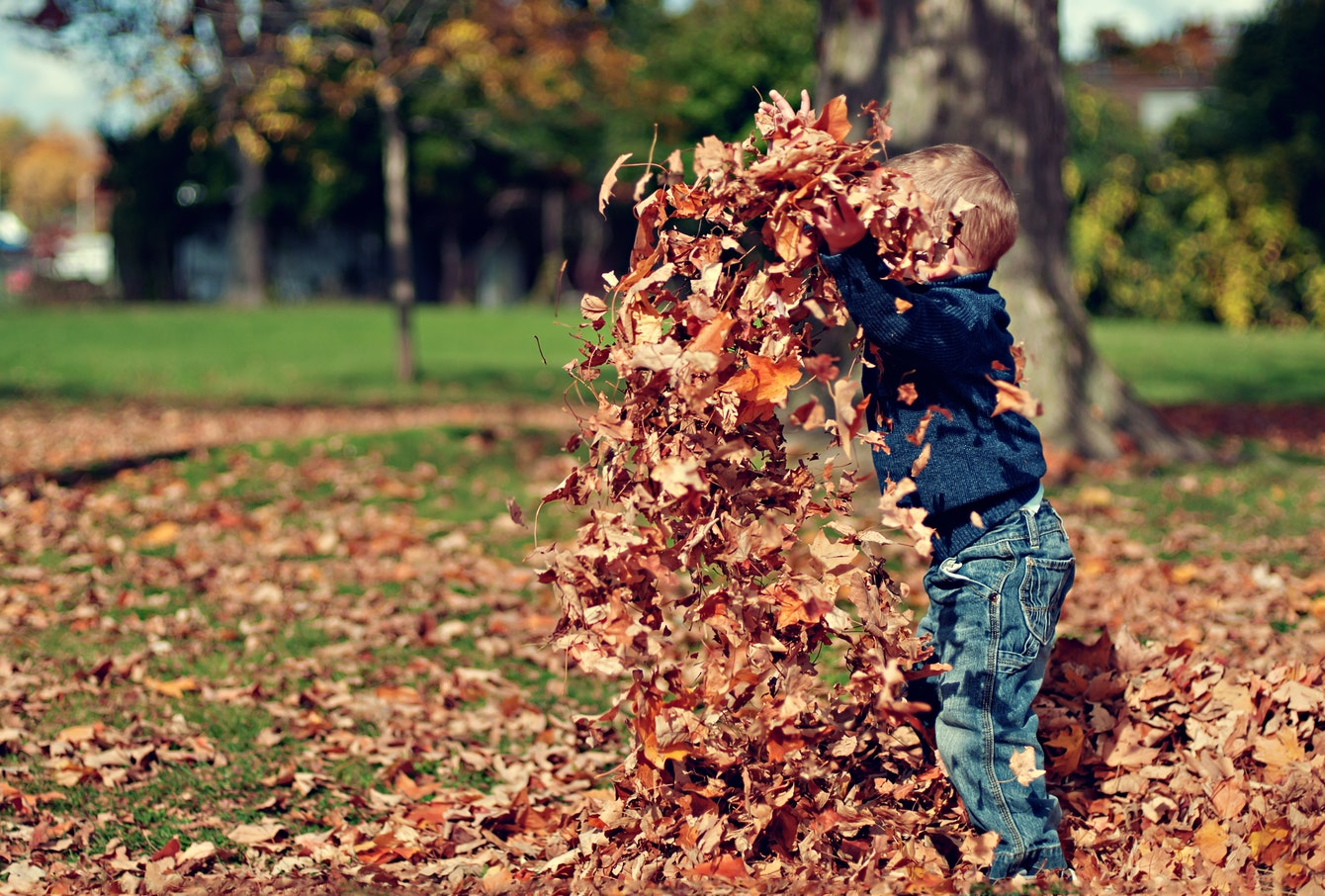 Child Playing With Leaves | Things To Do in Blackpool